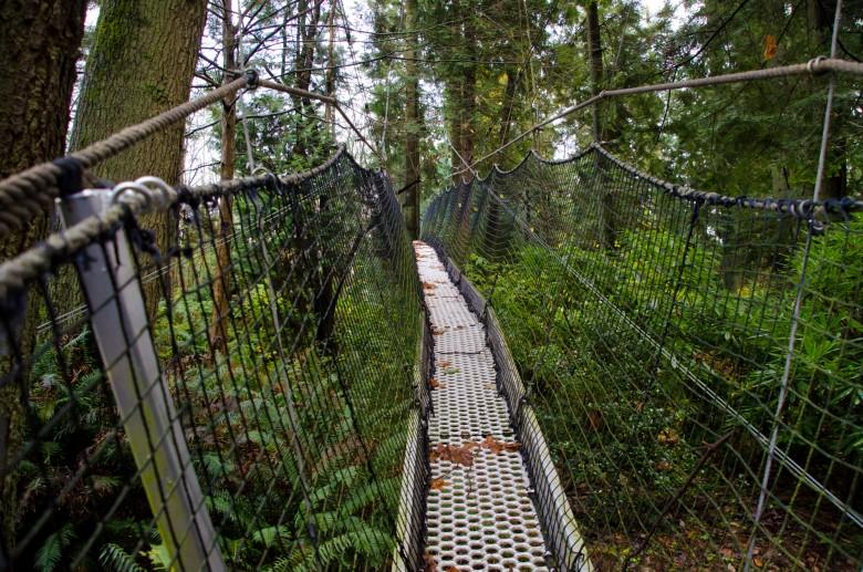 UBC_Botanical_Gardens-8