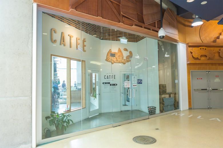 1-catfe