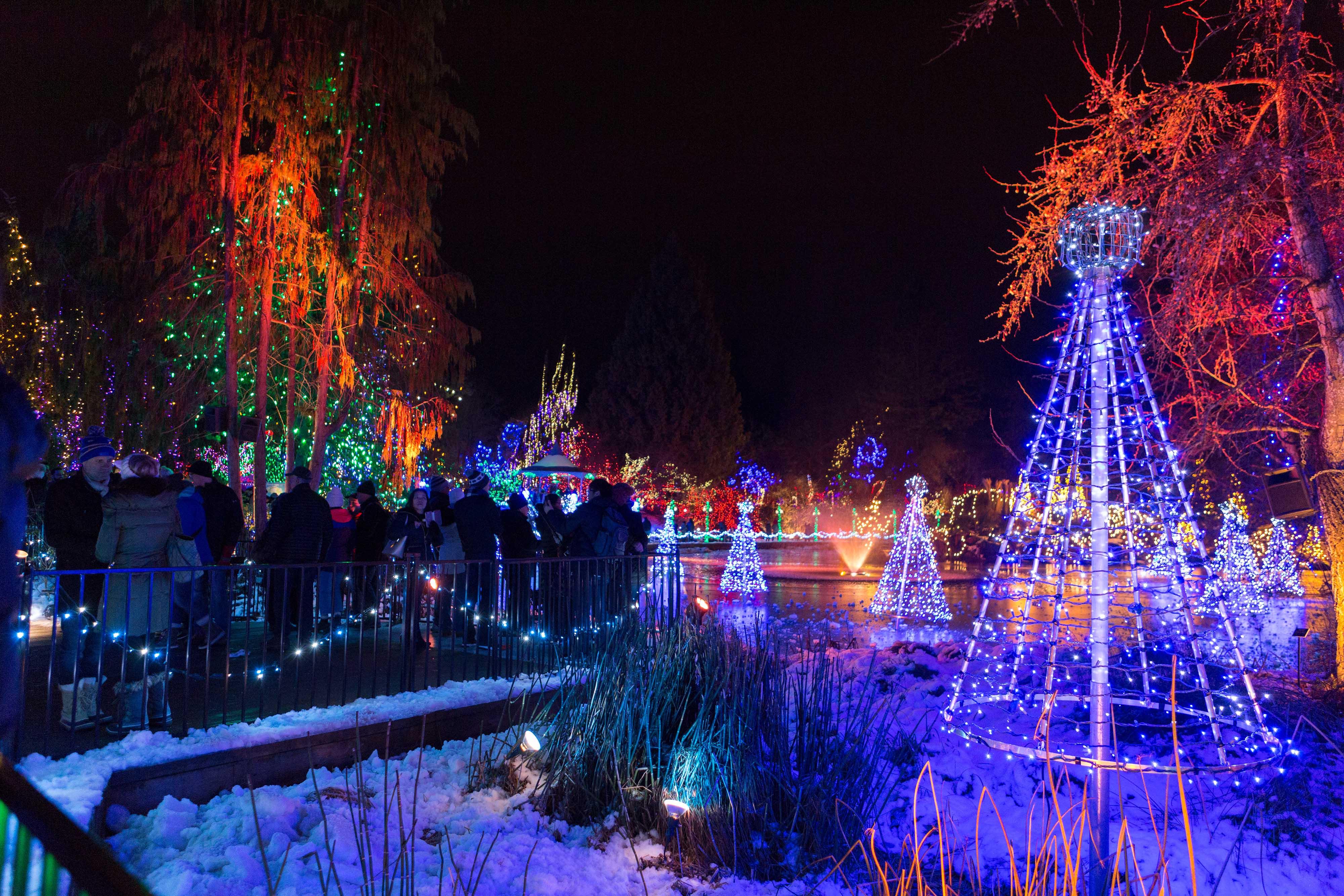 Christmas lights essay