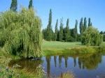 Surrey Golf Course Hole 2