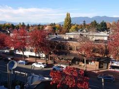 205 3440 W BROADWAY - Vancouver Westside North - Kitsilano