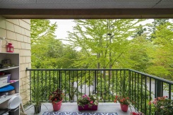 302 5556 14 AVENUE - South Delta - Cliff Drive