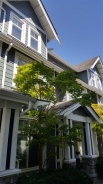345 W 59TH AVENUE - Vancouver Westside South - South Cambie
