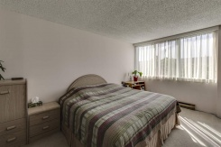 3952 HASTINGS STREET - Burnaby North - Willingdon Heights