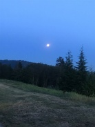 421 3629 DEERCREST DRIVE - Mount Seymour Parkway - Deep Cove