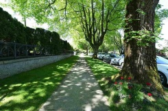 1020 WOLFE AVENUE - Vancouver Westside North - Shaughnessy