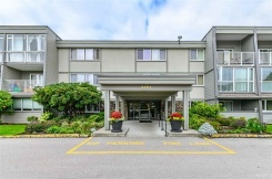 313 3451 SPRINGFIELD DRIVE - Steveston - Steveston North