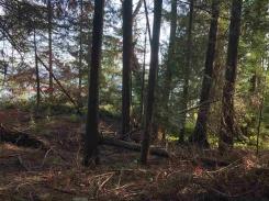 4720 CLOVELLY WALK - West Vancouver North - Caulfeild