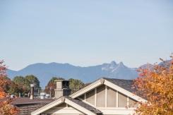 1 4352 ALBERT STREET - Burnaby North - Vancouver Heights