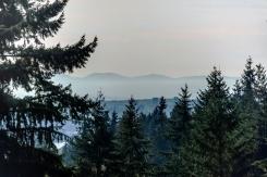 2940 DRESDEN WAY - Mount Seymour Parkway - Blueridge NV