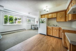 229 FOURTH STREET - New Westminster - Queens Park