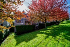 47 323 GOVERNORS COURT - New Westminster - Fraserview NW