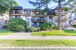 204 425 ASH STREET - New Westminster - Uptown NW