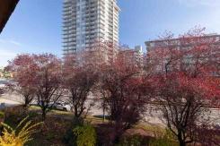 304 2299 E 30TH AVENUE - Vancouver East - Victoria VE