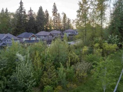 13528 229 LOOP - Maple Ridge - Silver Valley