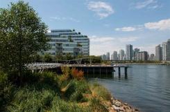 202 181 W 1ST AVENUE - Vancouver Westside North - False Creek