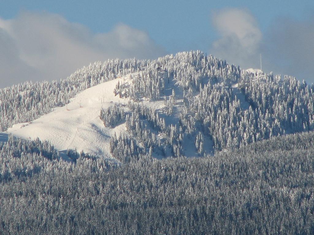 Frosty mountainside
