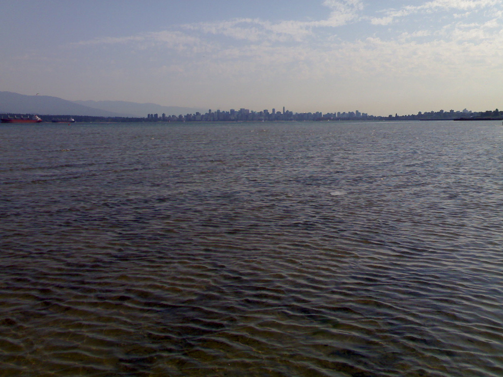 Vancouver from the distance