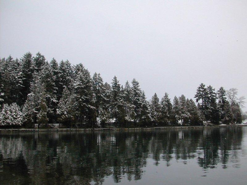 Winter in Coal Harbour