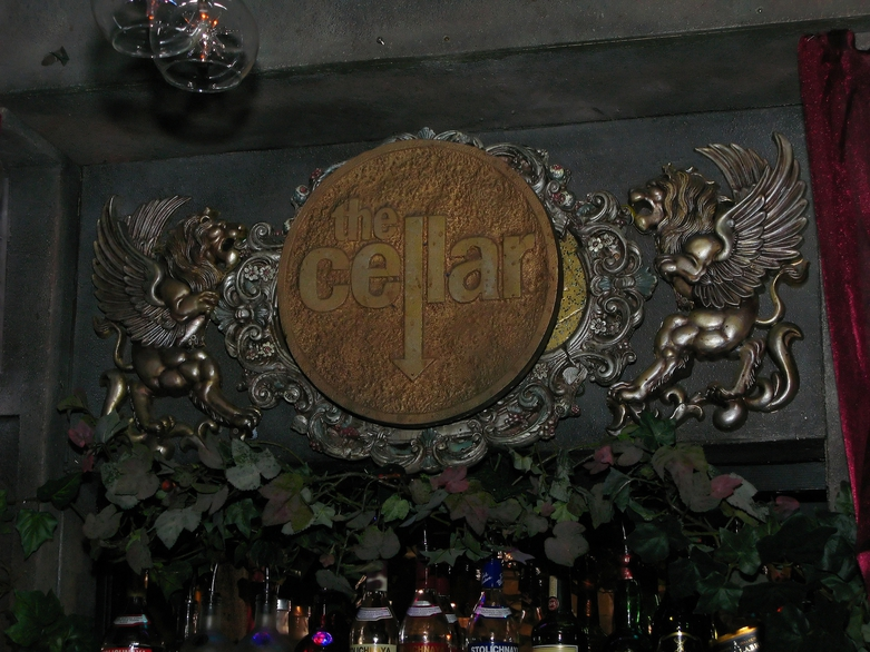 Once upon a Dream at the Cellar Nightclub by Raj Taneja