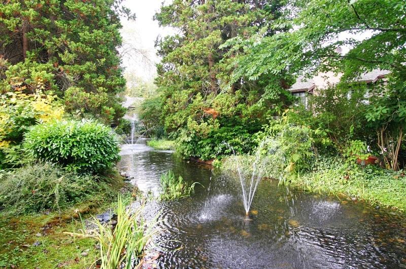 osterley park pond