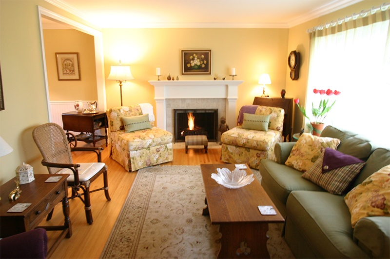 living room and gas fireplace