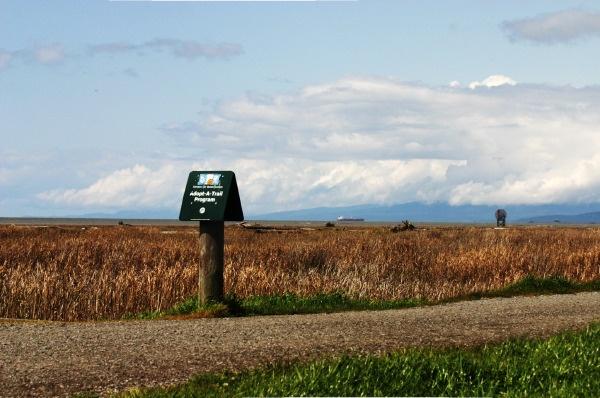 nearby dyke trail