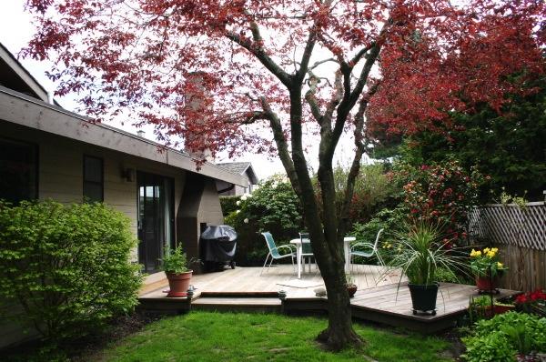 sideyard north view