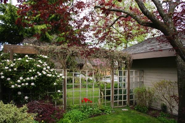 sideyard south view