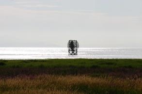 silver ocean vista