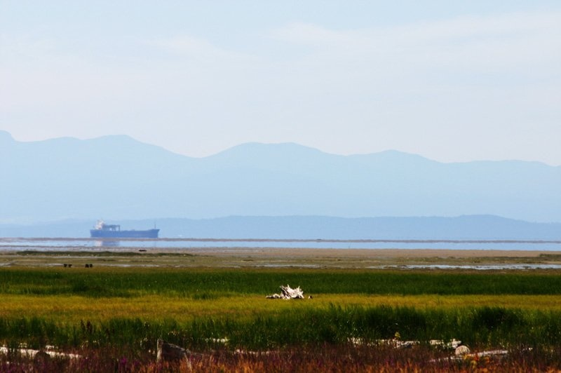 w. dyke trail  ocean & gulf islands view