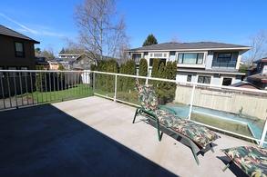 sundeck yard  & inground pool