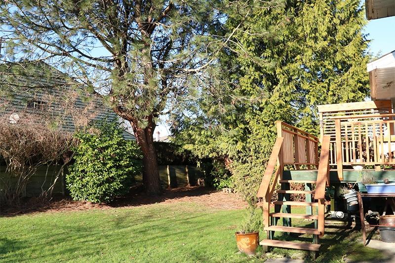 backyard & sundeck