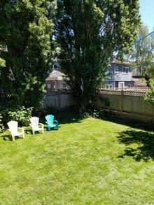 backyard  piermond