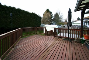 sundeck and backyard