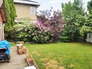backyard garden  11080 king rd