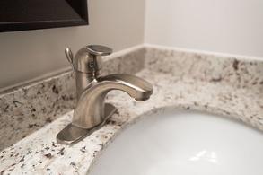 main bath sink finishings
